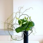 くねくねとあるいは折れ曲がって上に伸びる形の花材で斬新アレンジを