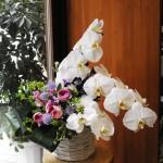 タブーのお花の組み合わせもこの方法できれいに出来る