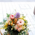 春の花って可愛い