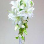 ★主張形態3-大きな主張のお花の取扱説明書2